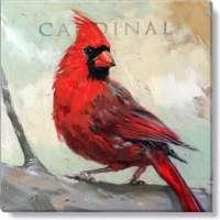 Cardinal Print - 5 x 5 in.