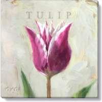 Purple Tulip Print - 5 x 5 in.