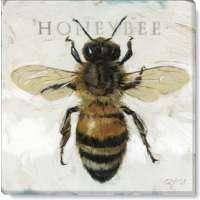 Honeybee Print - 5 x 5 in.